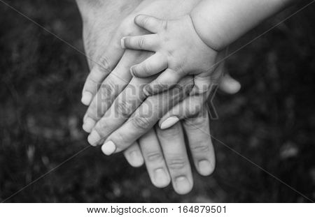 Three hands of the same family - father mother and baby stay together. Close-up. The concept of family unity protection support prosperity love and parental happiness.