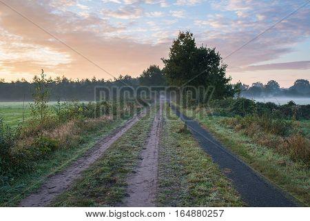 Path And Track In Misty Countryside Landscape. Noordijkerveld. Achterhoek. Gelderland. The Netherlan