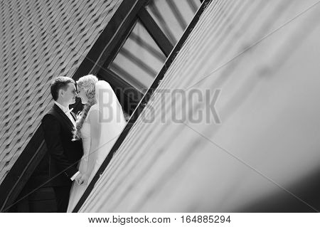 Special day. Monochrome shot of a beautiful happy wedding couple holding hands rubbing noses soft focus