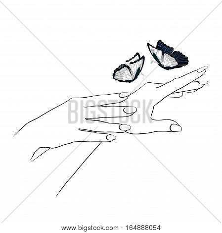hands care female girl coloring and blue morpho monarch butterfly graphic. vector illustration