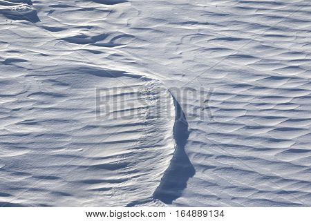 Off piste after snowfall in ski resort at sun wind day poster