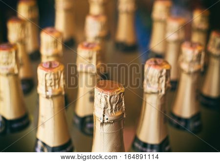 Champagne bottles in the wine store. Close-up view
