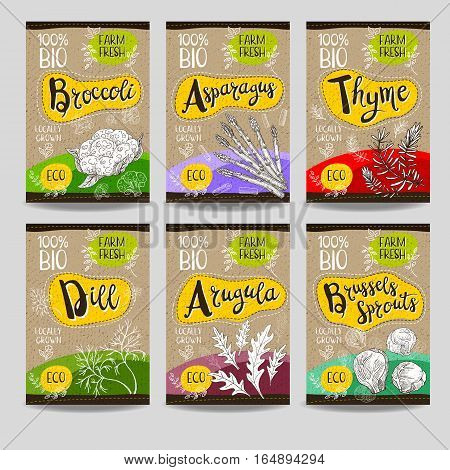 Set of colorful labels, sketch style, food, spices, cardboard texture. Asparagus, brussels sprouts, broccoli, thyme, arugula, dill. Farm fresh, locally grown. Hand drawn vector illustration.
