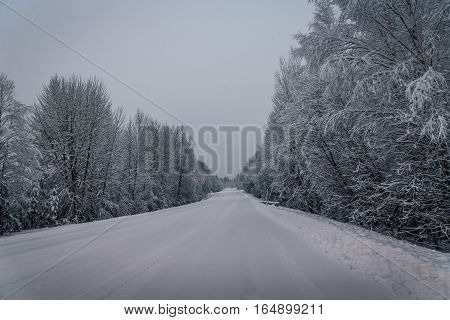 View of a slippery winter road in Sweden, with snow and ice hanging from the trees.