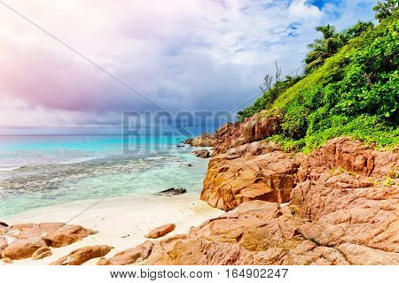 Photo of a tropical beach on the sunny day. Toned image