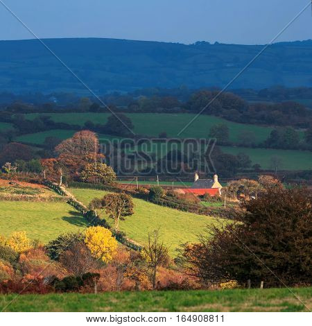 The hills in the Dartmoor National Park. Pastures and small house. Autumn evening.