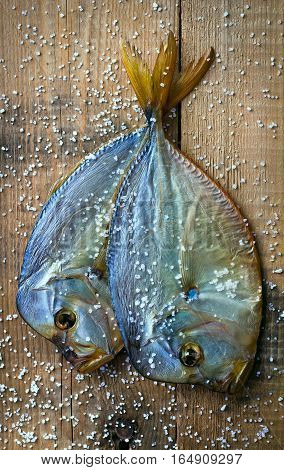Salted fish cold smoked. Two Vomero. Are scattered sea salt. Natural background of wood.