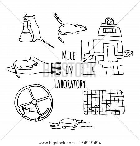 Mice in lab hand drawn. Stock vector illustration of usual laboratory mouse behavior with objects like cage syringe wheel maze scale. In vivo testing animal experimentation icons