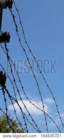 Strands Of Barbed Wire And The Blue Sky