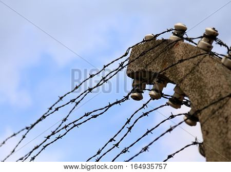 Dangerous And Sharp Barbed Wire
