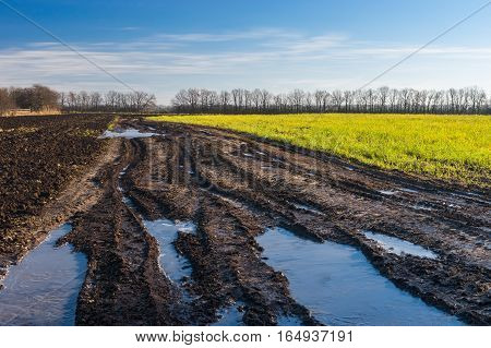 Landscape with dirty country road between agricultural fields in central Ukraine at sunny autumnal day