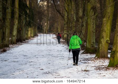 close up on Nordic walking in the park winter