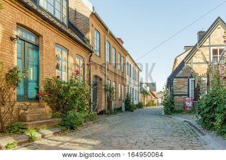 Lund, Sweden, July 22, 2016 - Old houses with roses in the old city of Lund, Sweden. The alley is paved with cobblestones.