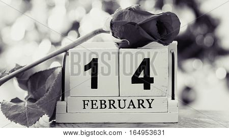 February 14 on wooden cube calendar red rose on blur colorful bokeh background sepia style