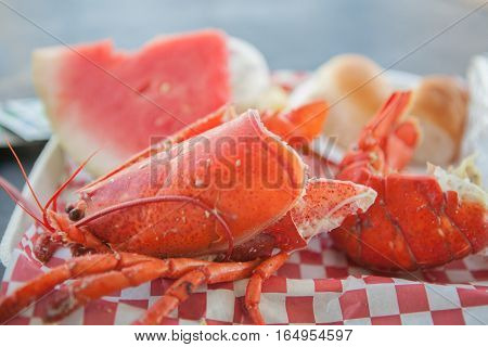 Lobster meat and shell on paper plate. Lobster food festival