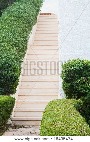 Stairs. Park with shrubs and green lawns landscape design. Beautiful Garden with a Freshly Mowed Lawn Landscaping. Palm tree. Summer travel photo conceptmer travel photo concept