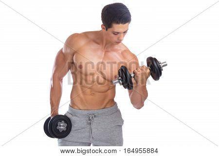 Bodybuilding Bodybuilder Muscles Biceps Body Builder Building Dumbbell Training Isolated