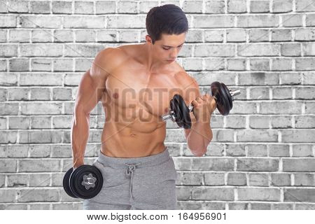 Bodybuilding Bodybuilder Muscles Biceps Body Builder Building Wall Dumbbell Training