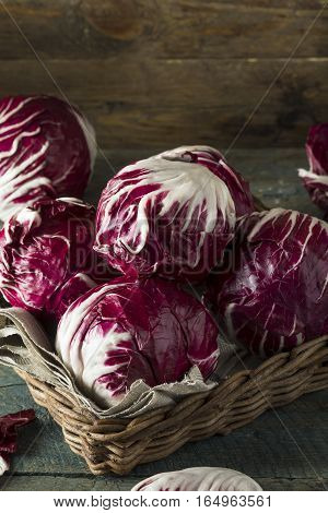 Raw Organic Purple Radicchio Lettuce