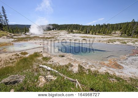 Shoshone Thermal Basin Panorama in Yellowstone National Park in Wyoming
