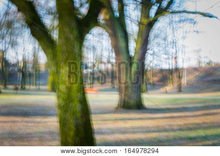 Park Abstraction. Long Exposure.