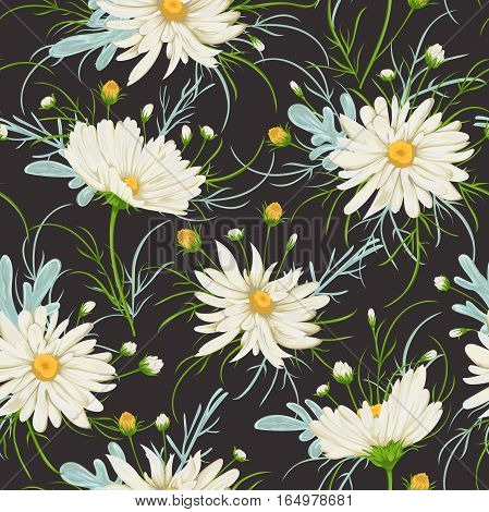Seamless pattern with white chamomile flowers and sagebrush. Rustic floral background. Vintage vector botanical illustration in watercolor style.