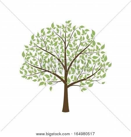 Tree with leaves on a white background. Isolated vector illustration.