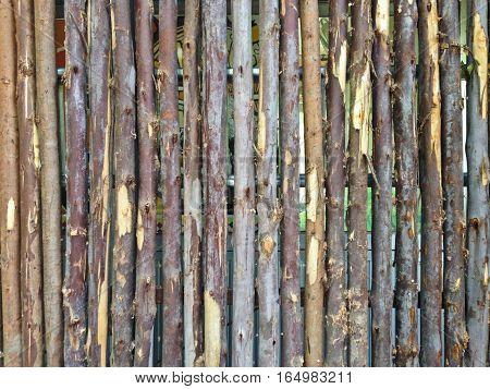 Beautiful Natural Background Pattern of a Log Wall