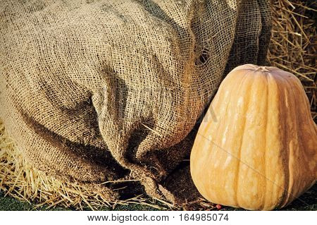 Big Yellow Pumpkin on burlap sack background taken closeup.Retro style toned image.