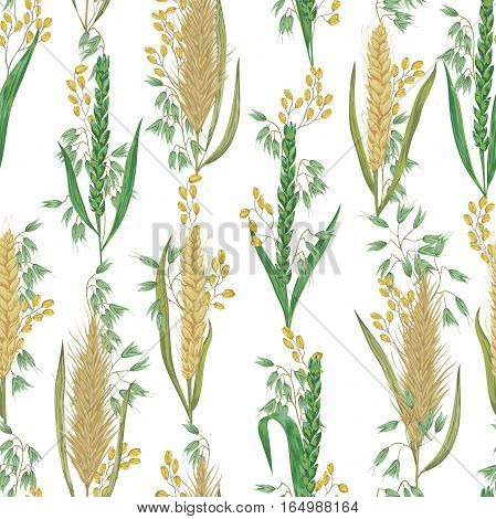 Seamless pattern with cereals. Barley, wheat, rye, rice and oat. Rustic floral background. Vintage vector botanical illustration in watercolor style.