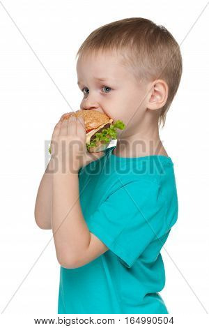 Little Boy With Hamburger