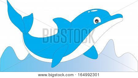 Good fun dolphin swims in the sea on a white background.