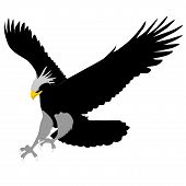 The vector image of a tattoo in the form of an eagle poster