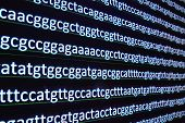 Modern technology: DNA sequencing. The letter symbols sequence of nucleotide bases in nucleic acids. poster