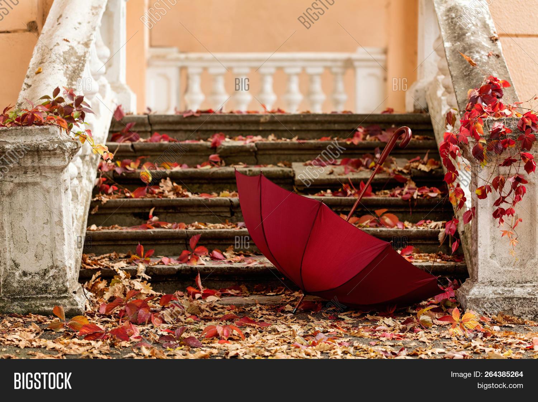 Autumn Red Stone