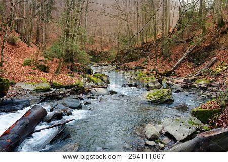Turichka River In The Forest Near Lumshory Village Of Transcarpathia, Ukraine. Beautiful Autumnal Sc