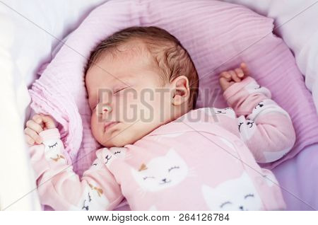 Sweet Caucasian Newborn Baby Sleeping In The Cradle Or Baby Carriage. Baby Sleep Concept Stock Image