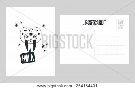 Cute Walrus Head Vector Illustration. Design Element, Double Sided Postcard With Hand Drawn Modern S