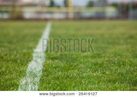 A White line on a soccer field with green grass