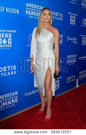 LOS ANGELES - SEP 29:  Denise Richards at the  2018 American Humane Hero Dog Awards at the Beverly Hilton Hotel on September 29, 2018 in Beverly Hills, CA