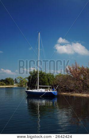 Sailboat In Biscayne Bay