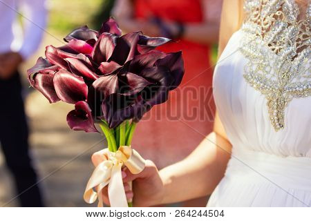 Female Hands With A Bouquet Of Burgundy Flowers