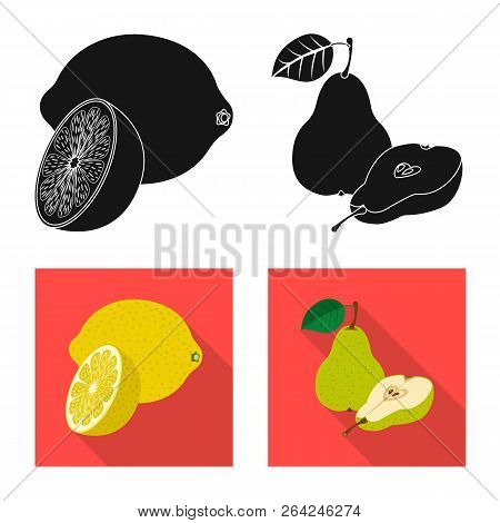 Vector Illustration Of Vegetable And Fruit Logo. Set Of Vegetable And Vegetarian Stock Symbol For We