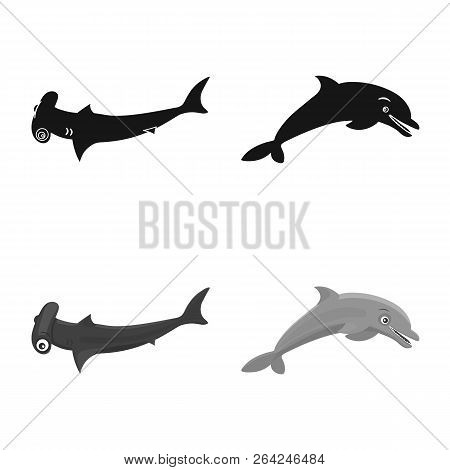 Vector Design Of Sea And Animal Icon. Set Of Sea And Marine Stock Vector Illustration.