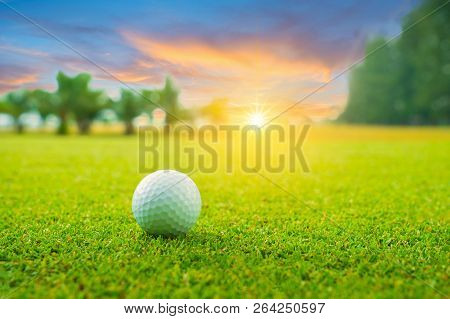 Golf Ball On Green In Beautiful Golf Course With Sunset. Golf Ball Close Up In Golf Coures At Thaila