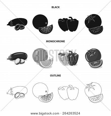 Vector Illustration Of Vegetable And Fruit Icon. Set Of Vegetable And Vegetarian Vector Icon For Sto