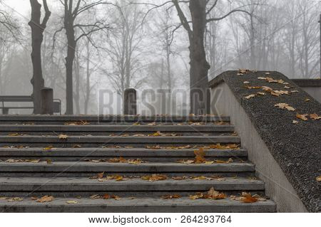 Stone Steps In Misty Melancholy October Autumn Park