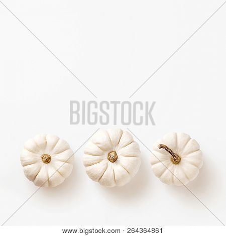minimal fall / autumn concept with three white pumpkins in a row on a white background - flat lay / top view