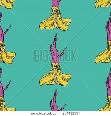 Horseradish Vector Crazy Coloured Pattern For Web, Textile, Branding, T-shirts, Cards, Craft