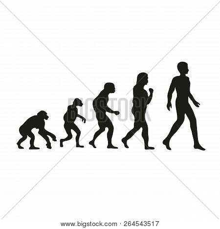 Darwin Evolution Of Human. From Monkey To People.